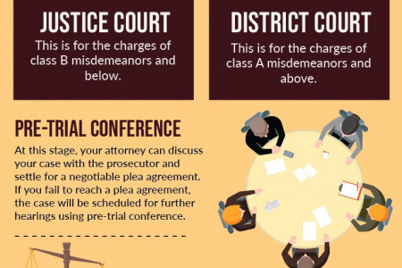 THE PROCEDURE OF CRIMINAL CASES Infographic
