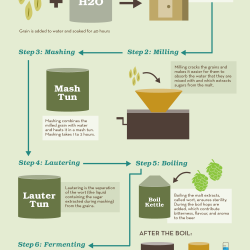 The Process of Brewing Beer | Visual.ly