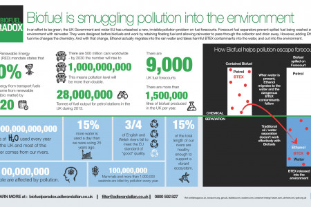 Biofuel Push Has Unleashed Pollution Problem Infographic