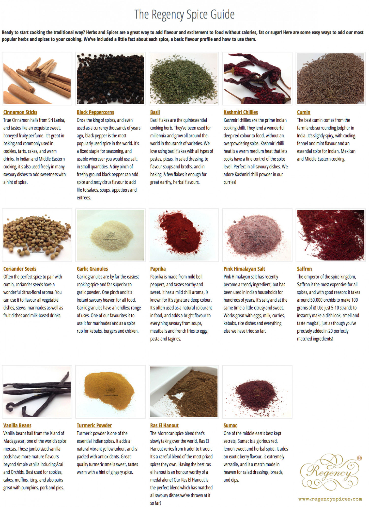 The Regency Spice Guide Infographic