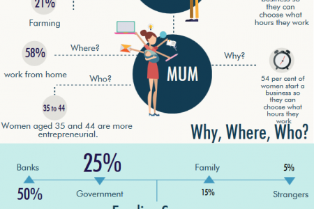 The Rise of the Modern Entrepreneur  Infographic