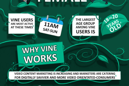 The Rise of Vine Infographic