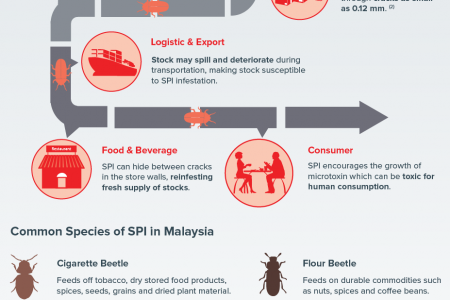 The Risk of Stored Product Insect (SPI) in Food Supply Chain Infographic