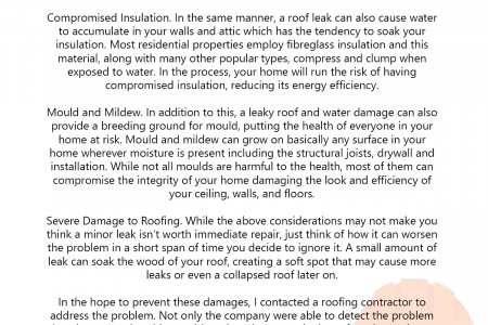 The Risks of Delaying Roof Repair Infographic