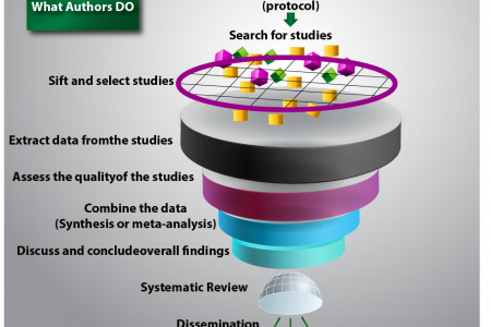 The Role of Systematic Literature Reviews - Scientific Research Infographic