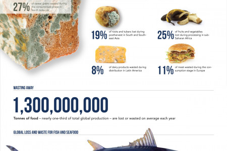 The Rotten World of Food Waste Infographic