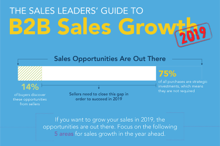 The Sales Leaders' Guide to B2B Sales Growth Infographic