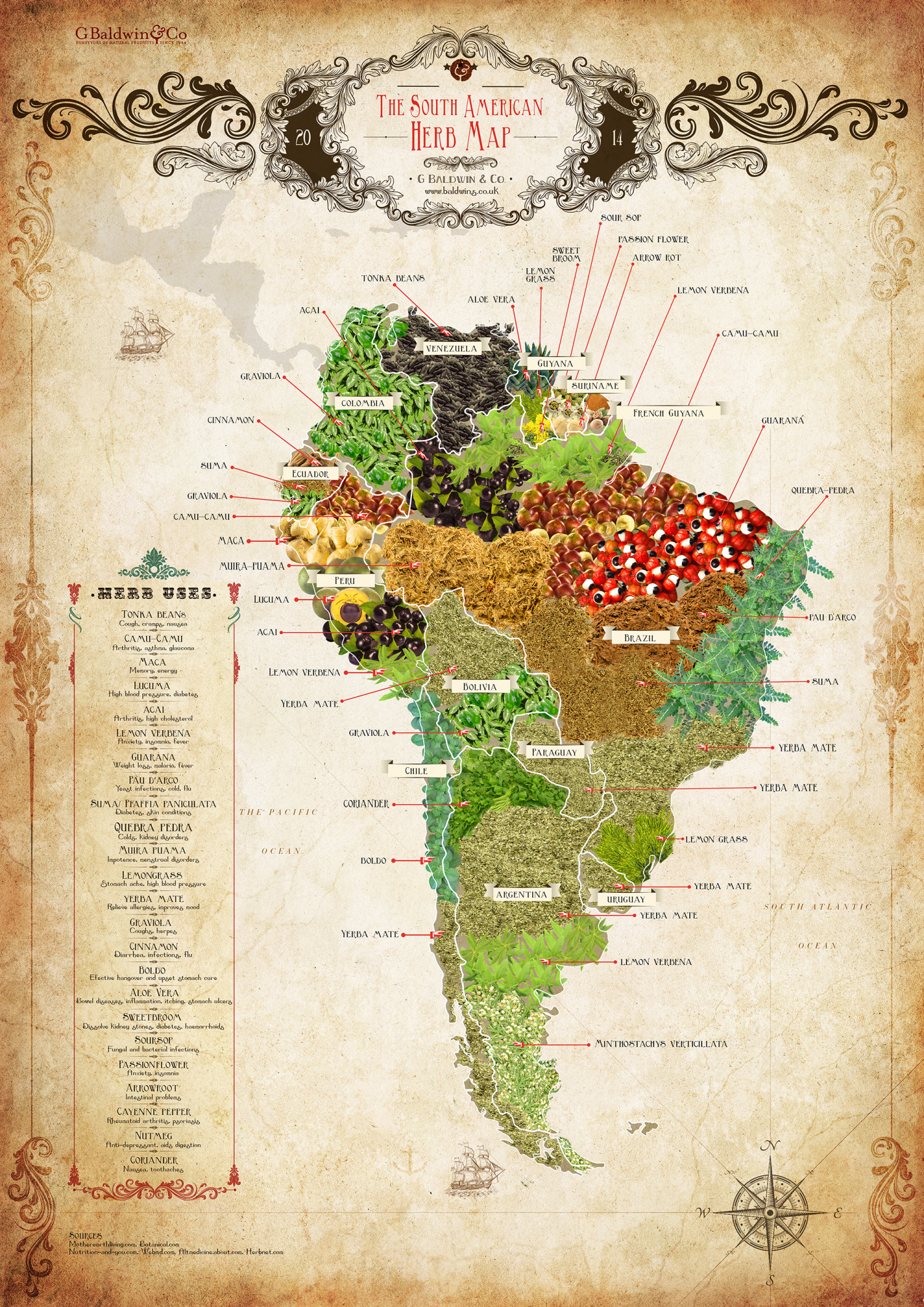 The South American Herb Map | Visual.ly
