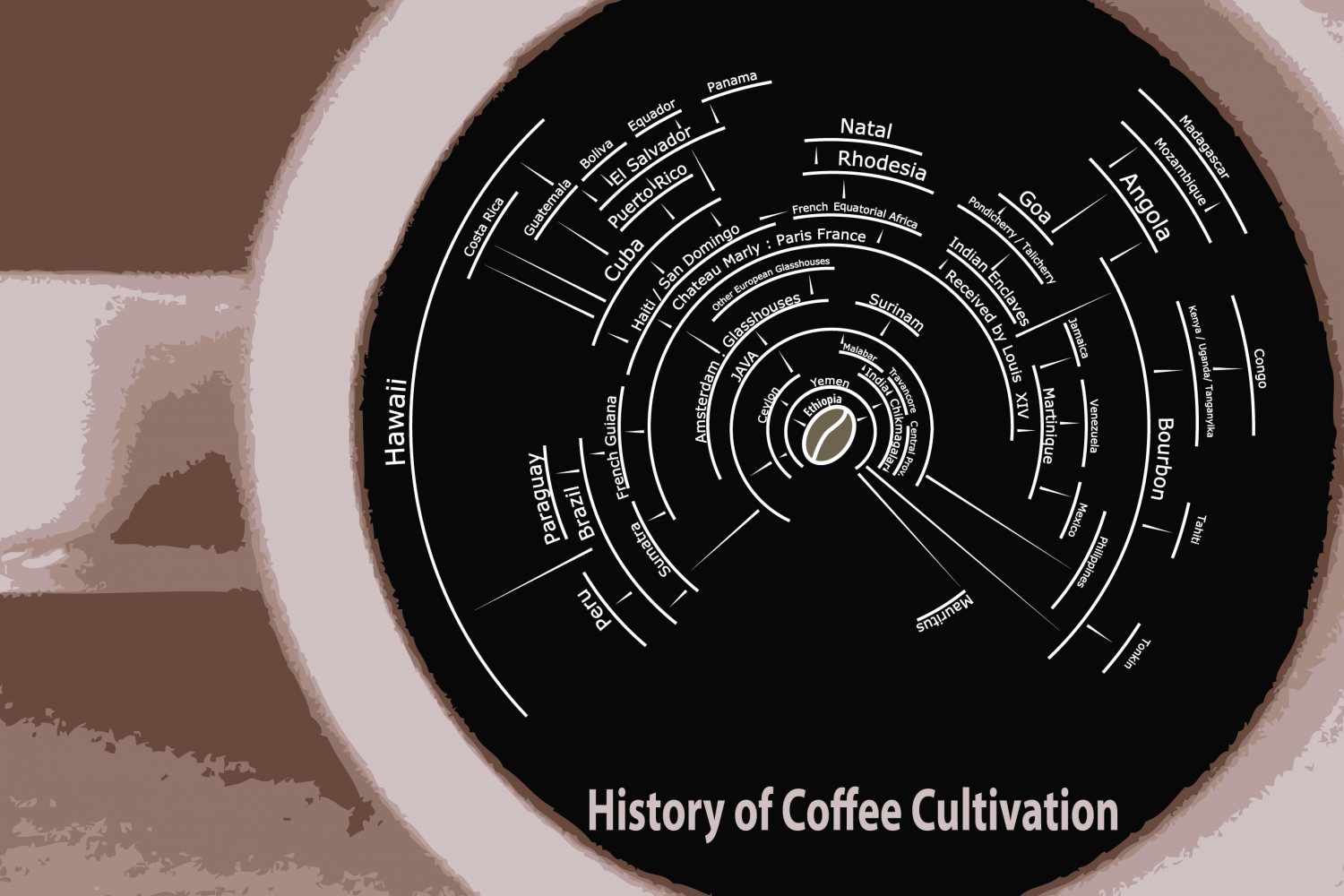 The Spread of Coffee Cultivation Infographic
