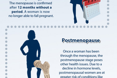 The Stages and Changes of the Menopause Infographic
