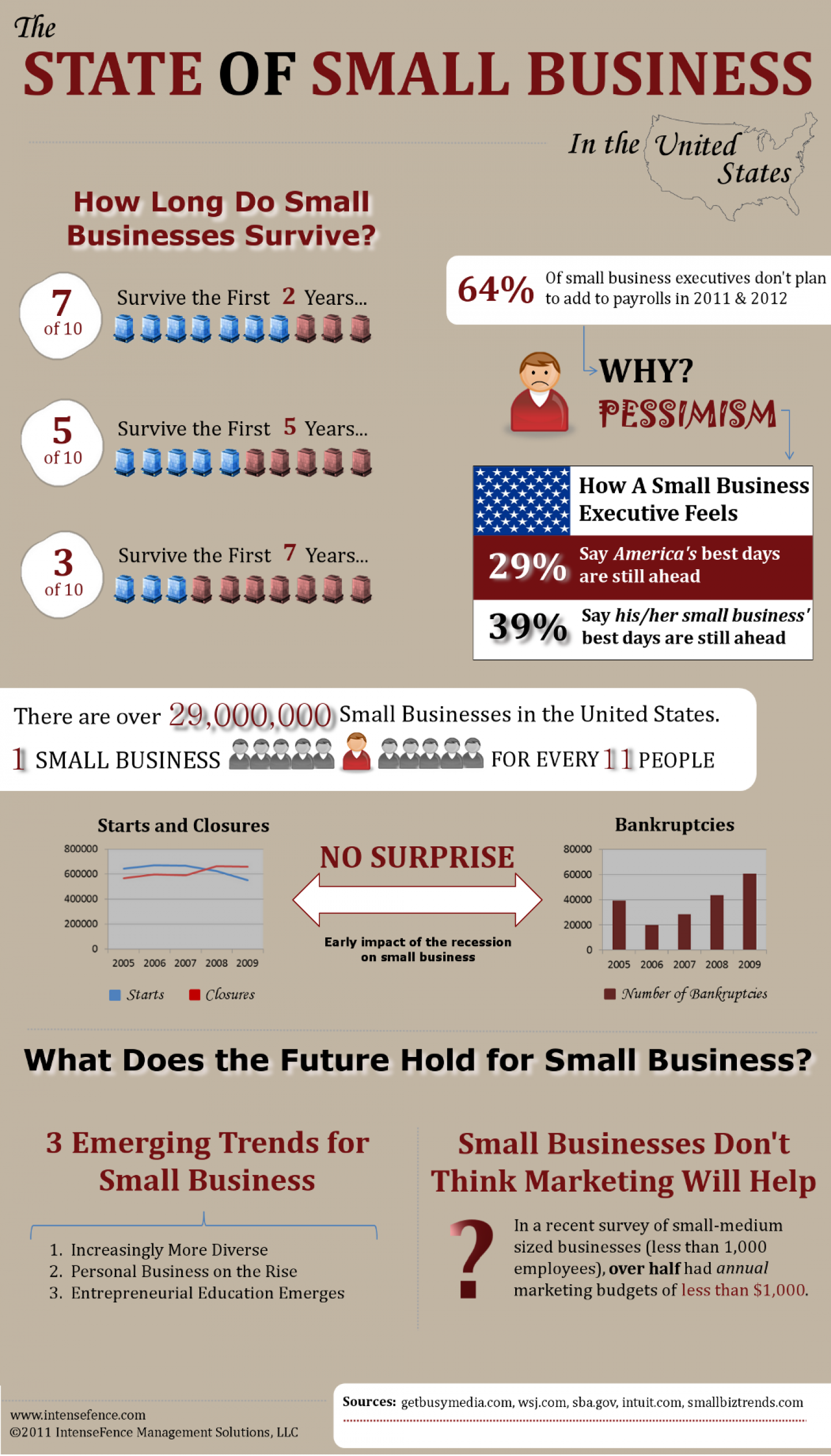 The State of Small Business in the United States  Infographic