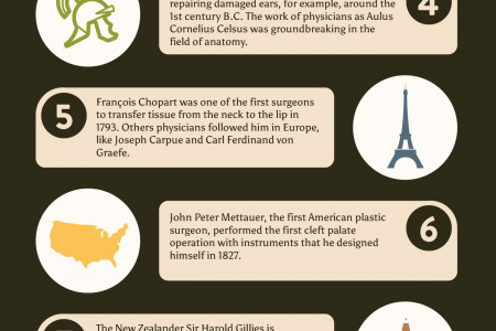 The Story of Plastic Surgery Infographic