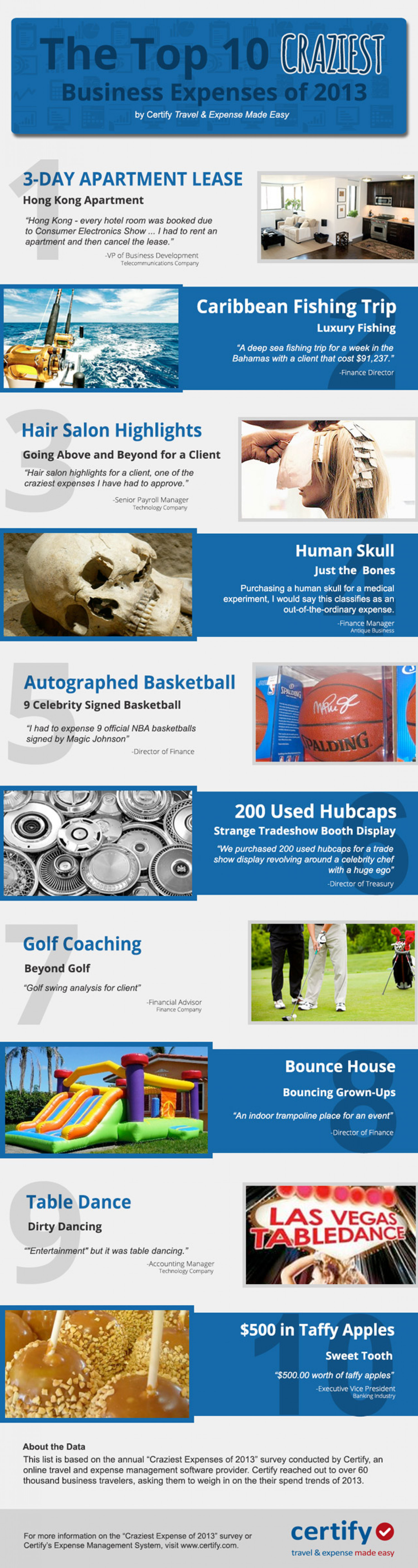The Top 10 Craziest Business Expenses of 2013 Infographic