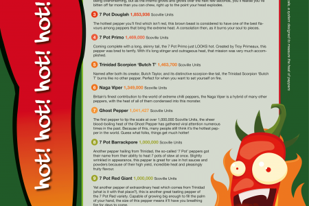 The Top 10 Hottest Chilli Peppers in the World Infographic