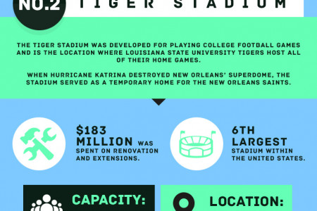 The Top 3 Largest Sports Stadiums in the World Infographic
