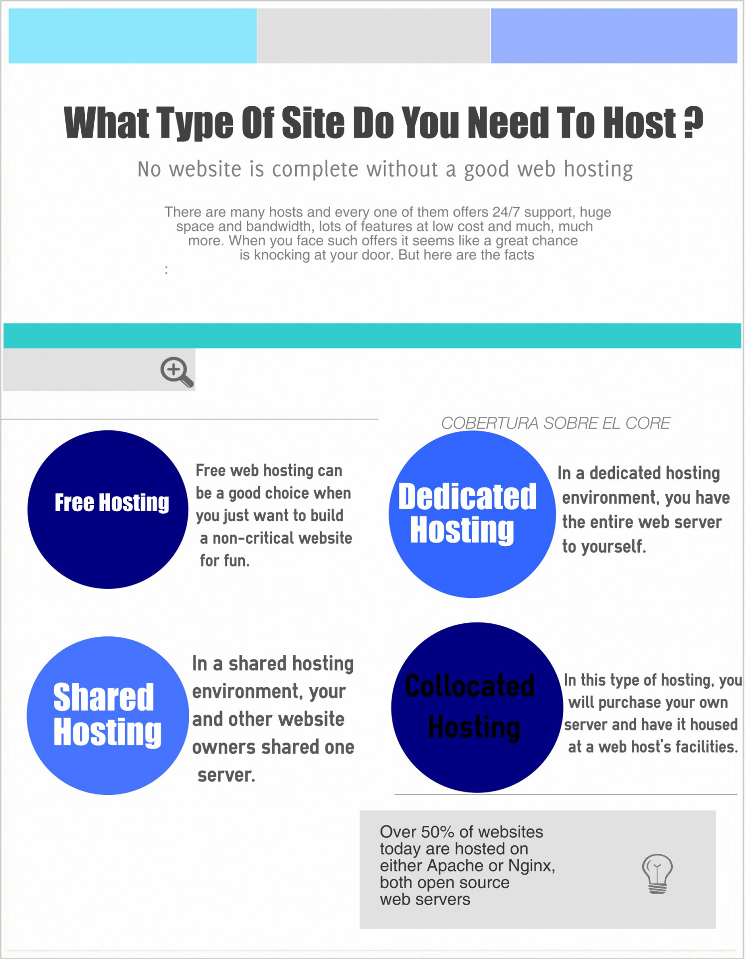 The Top Hosting Service Infographic