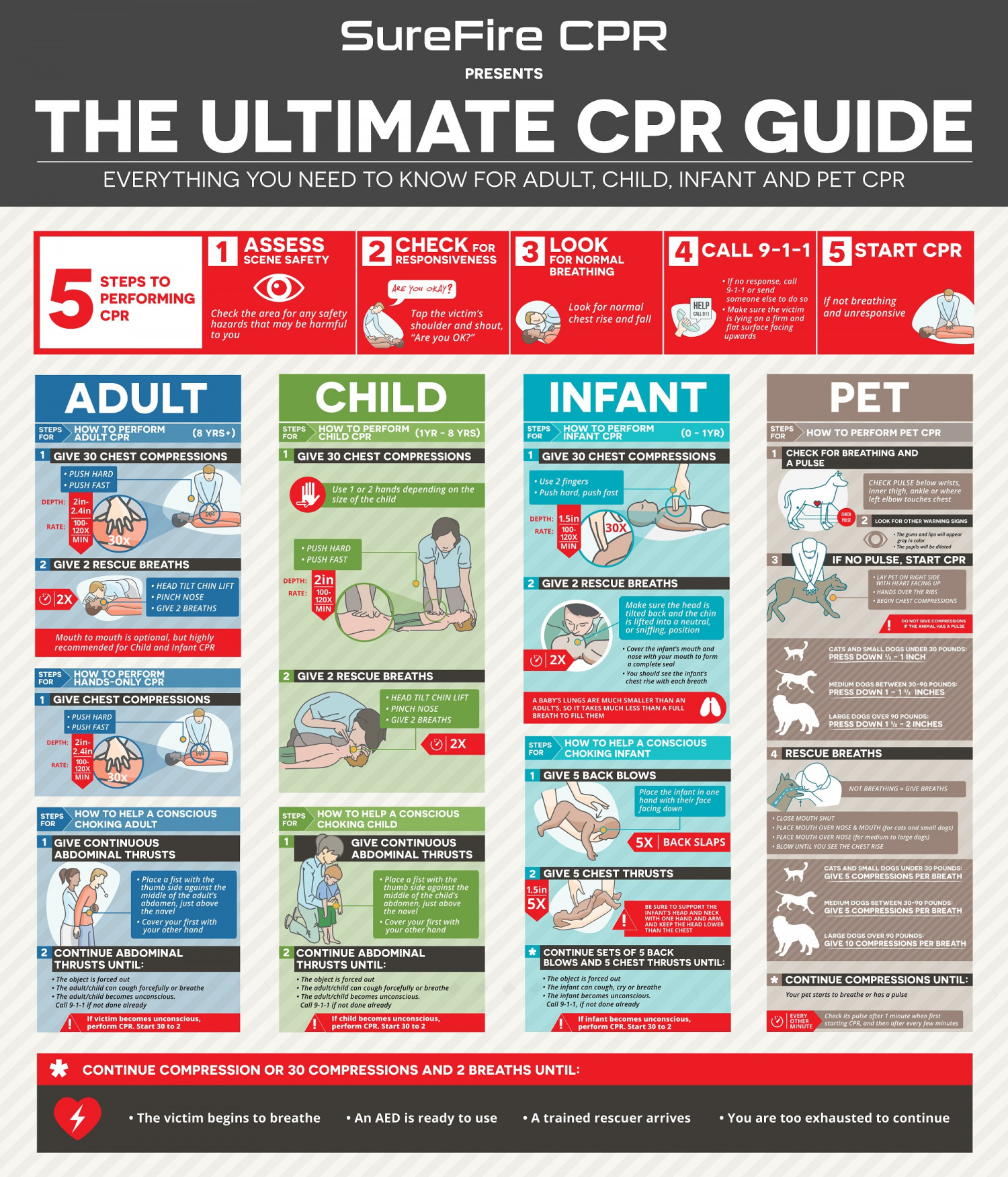 THE ULTIMATE CPR GUIDE Infographic