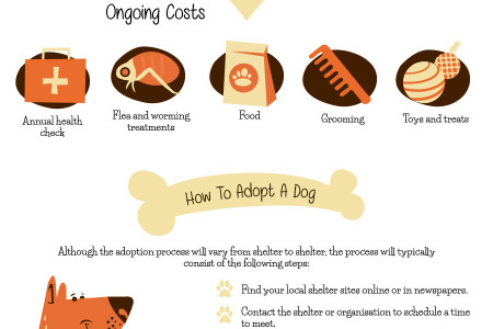 The Ultimate Guide To Dog Adoption [Infographic] Infographic