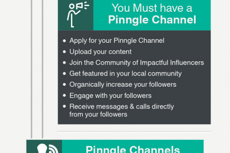 The Ultimate Guide to Pinngle Public Channels Infographic