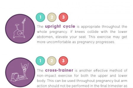 The Ultimate Guide to Prenatal Exercise  Infographic