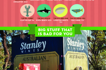 The Ultimate Guide to The Aussie Big Things Infographic