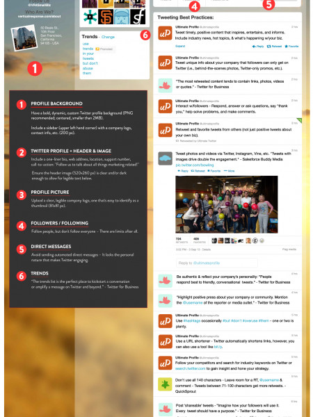 The Ultimate Twitter Profile  Infographic