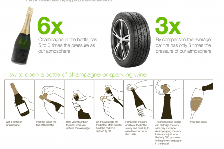 The Ultimate Visual Guide to Champagne and Sparkling Wine Infographic