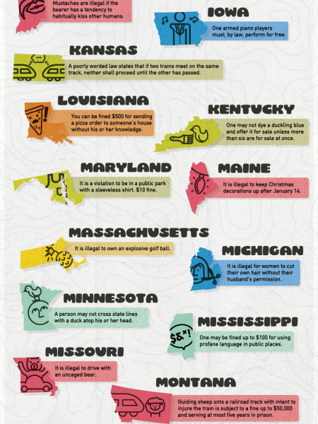 The United States of Crazy Laws Infographic