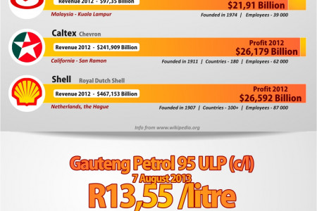 """The """"Unleaded"""" Truth About South Africa's Fuel Companies Infographic"""