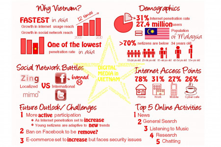 The Vietnamese Take on Social Media Infographic