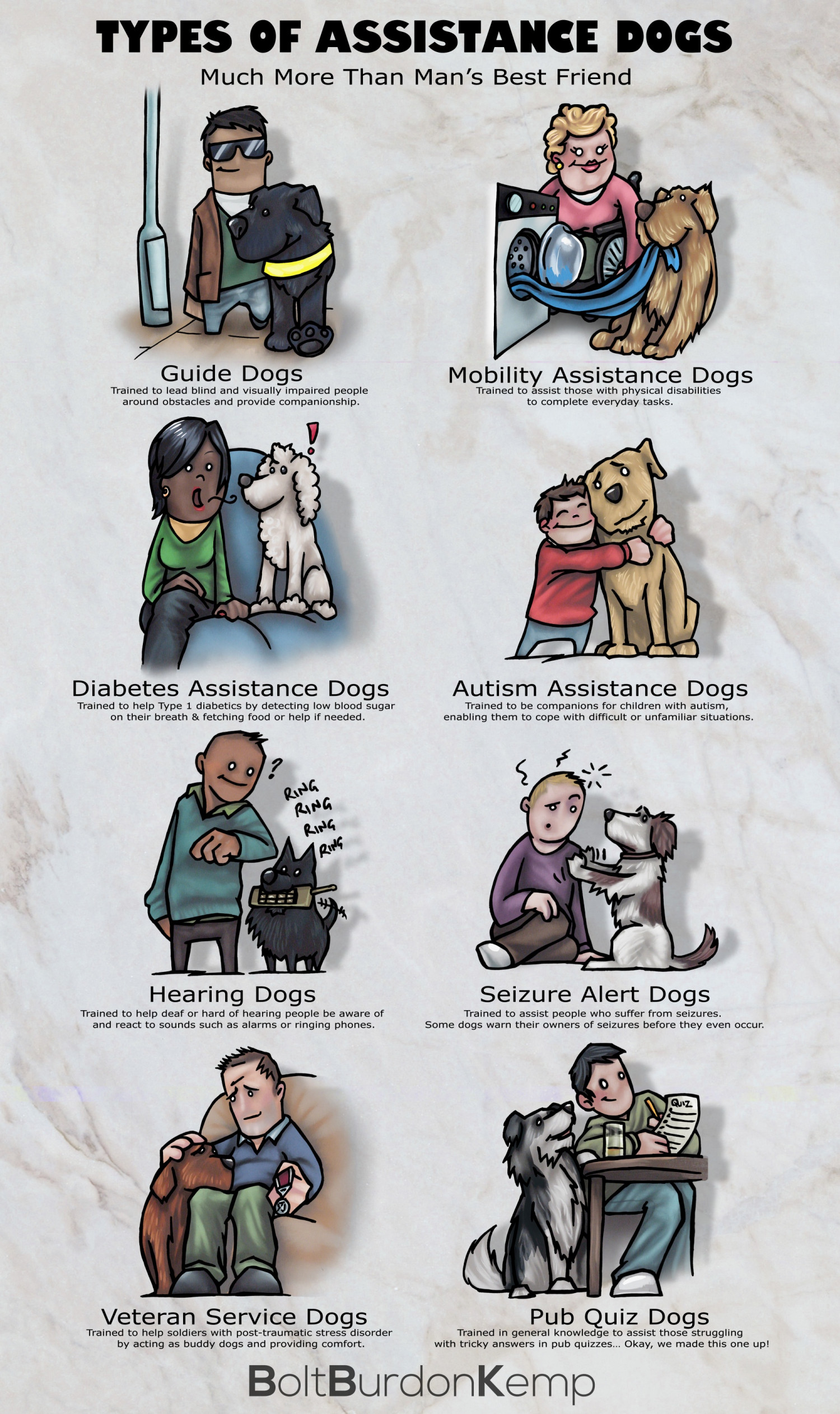 Types of Assistance Dogs Infographic