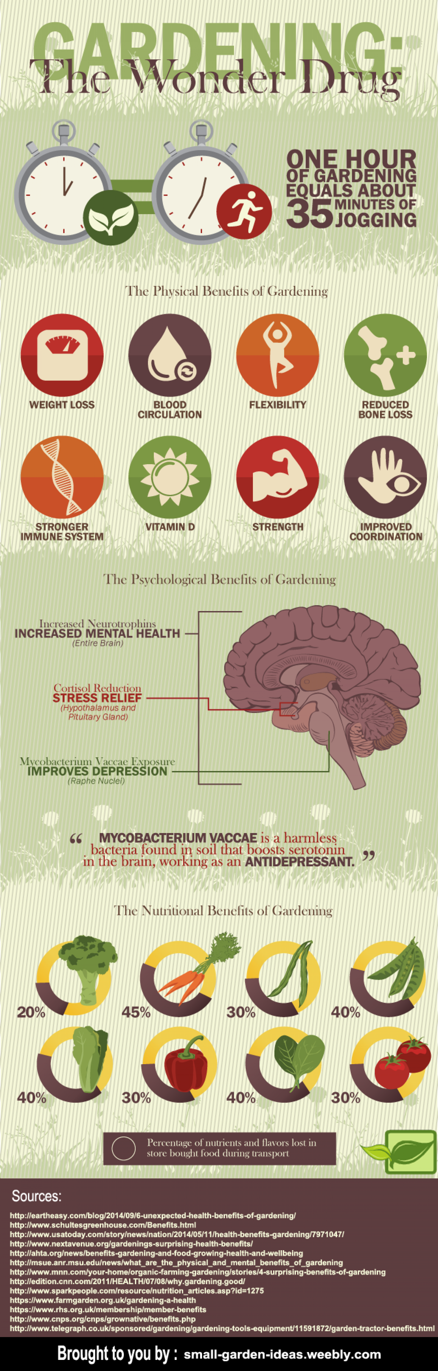 The Wonder Drug Gardening Infographic