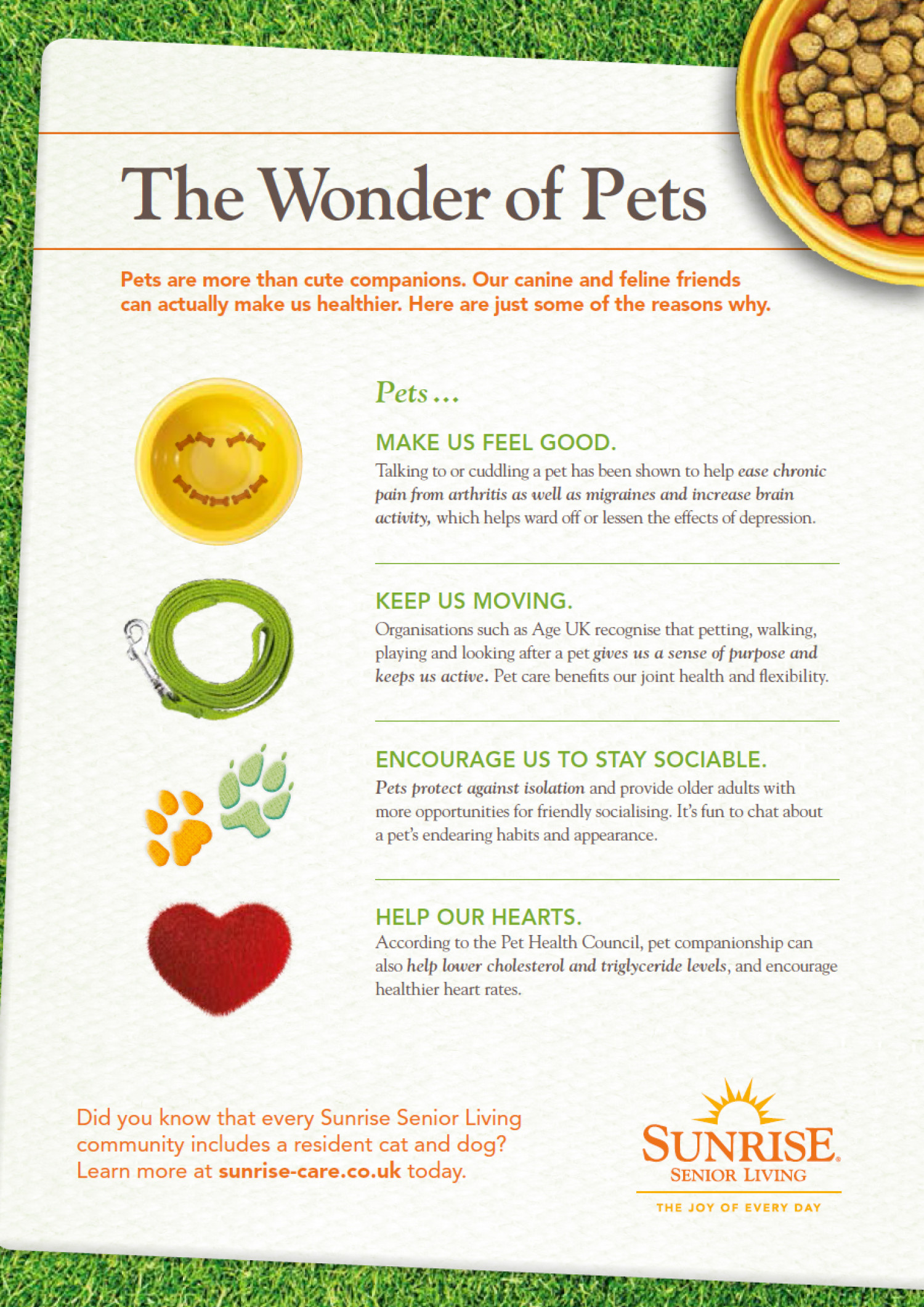The Wonder of Pets Infographic