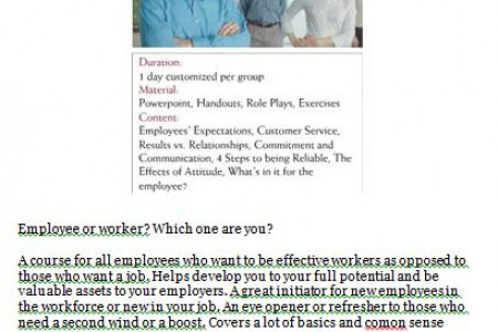 The Working Employee of Dyman Management & Associates Business Solutions Infographic