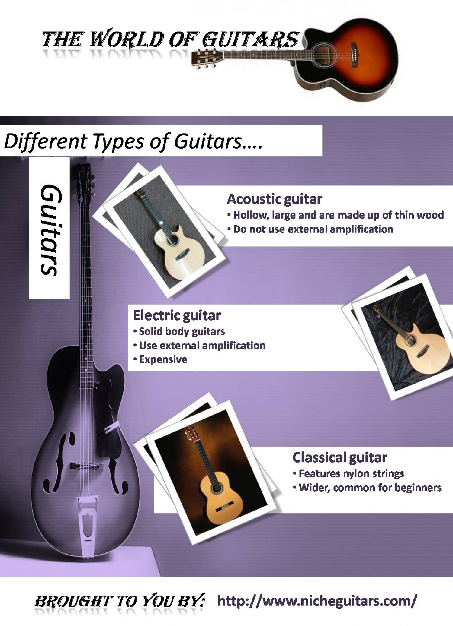 The World of Guitars Infographic