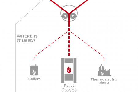The World of Pellet Infographic