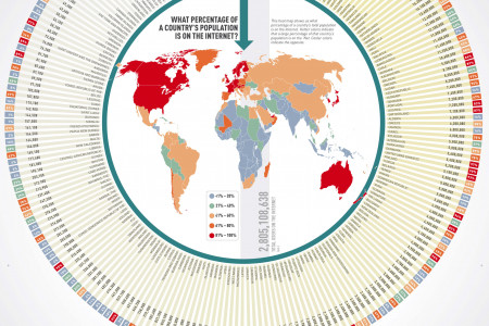 The World Wide Web: A Breakdown of Internet Users by Country Infographic