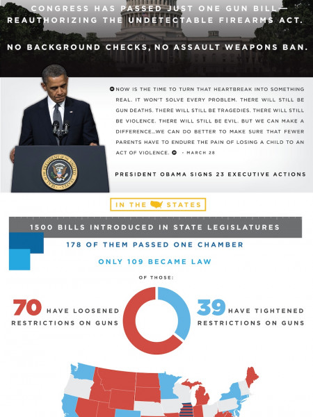 The Year of Violence Infographic