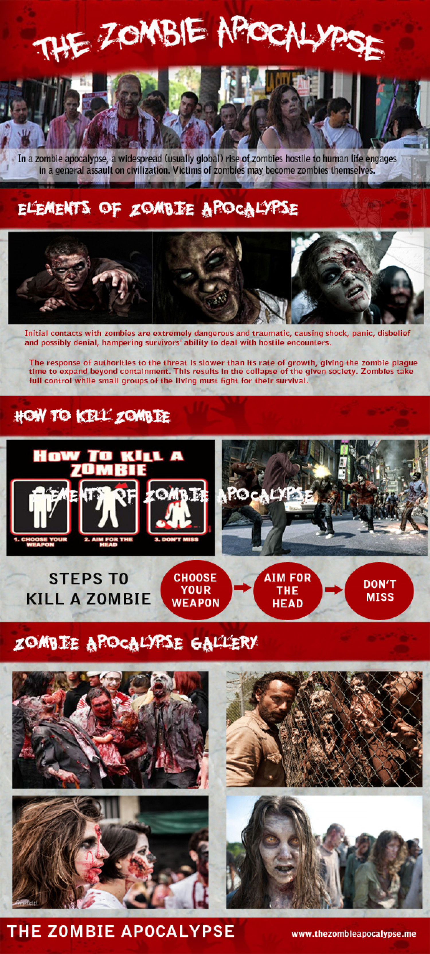 The Zombie Apocalypse Infographic
