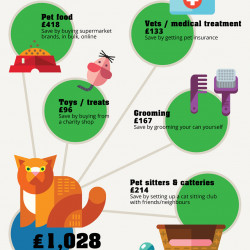 The Shocking Cost of Owning a Cat in the U K  | Visual ly