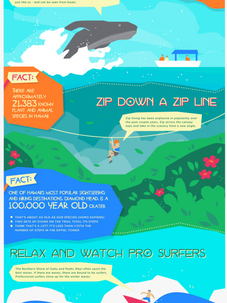 Things to do in Hawaii Infographic