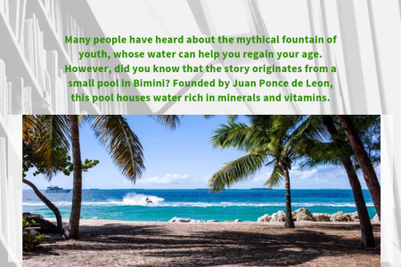Things you Must See During your Bimini Yacht Charter Vacations Infographic