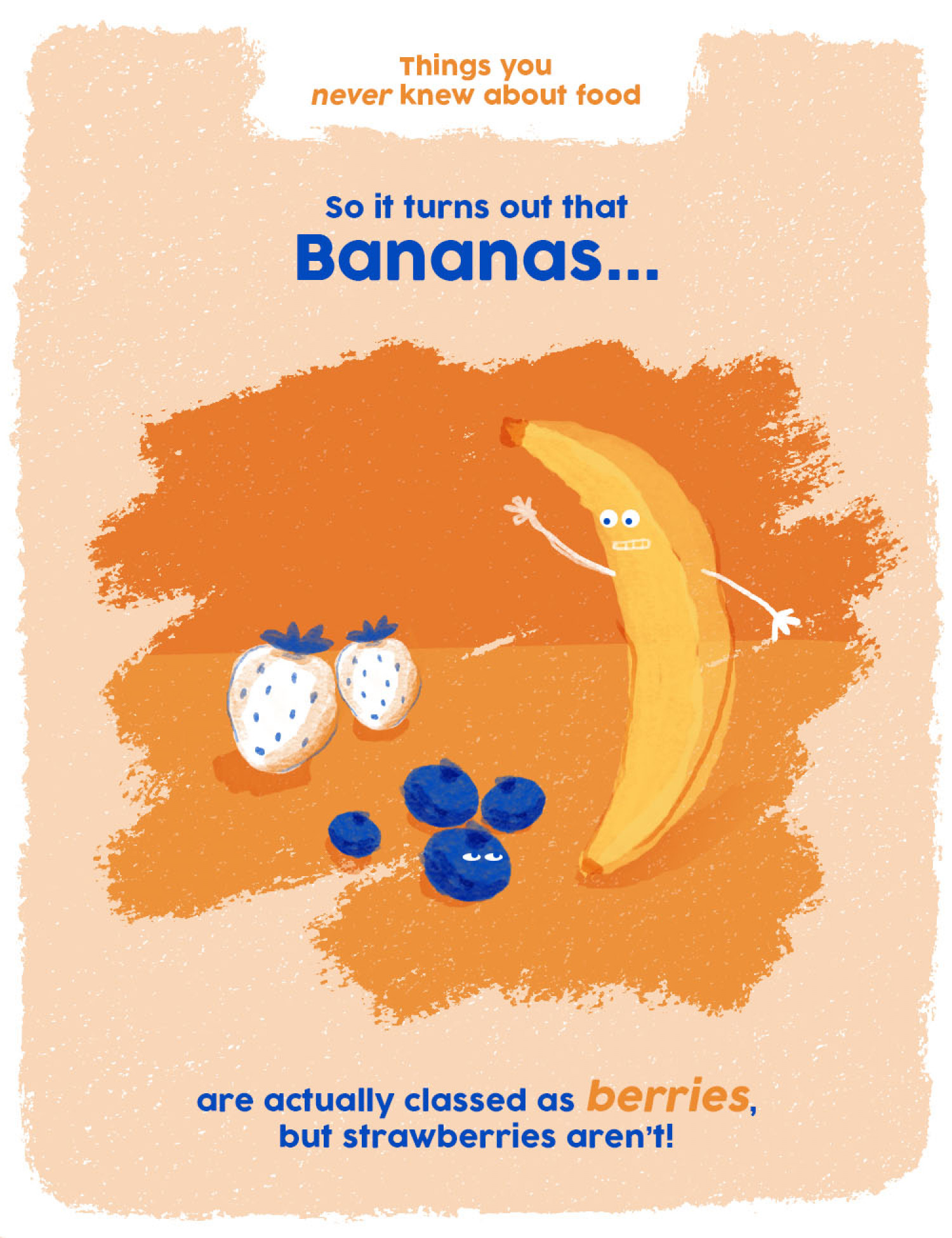 Things You Never Knew About Food: Bananas Infographic