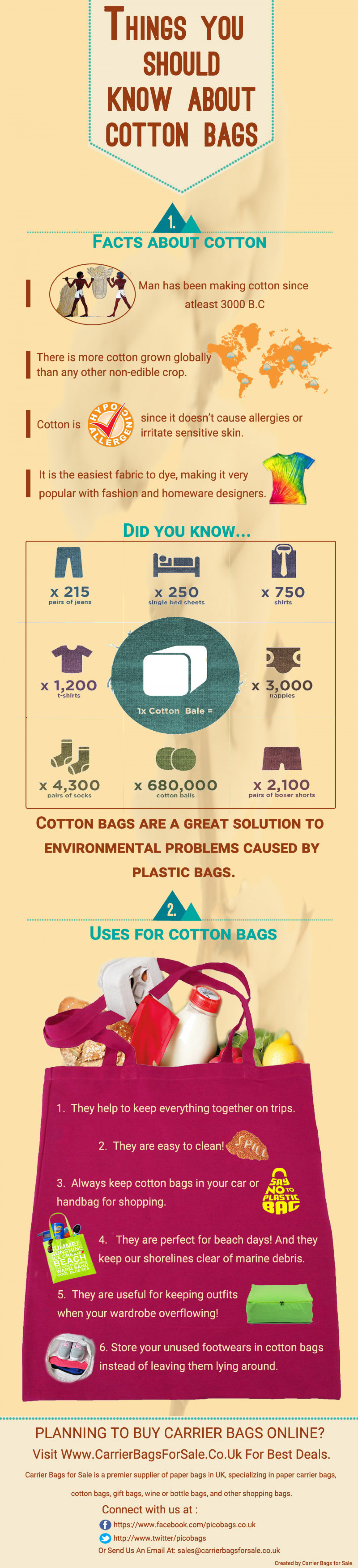 Things You Should know About Cotton Bags Infographic
