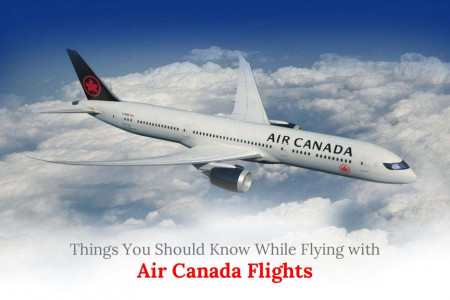 Things You Should Know While Flying with Air Canada Flights Infographic
