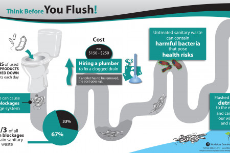 Think Before you Flush! Infographic