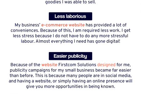This Web Development Company Helped Me with The Processes of My Small Business Infographic