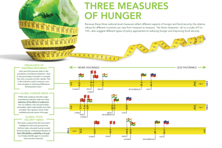 Three Measures of Hunger Infographic