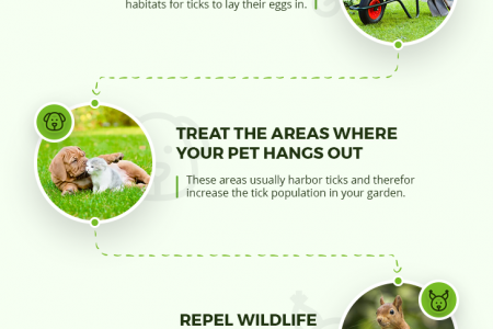 Tick Control Tips For Your Yard Infographic