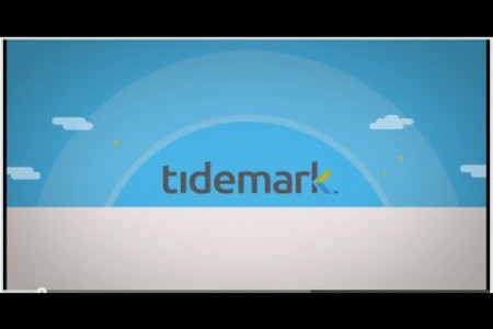 Tidemark Overview Infographic